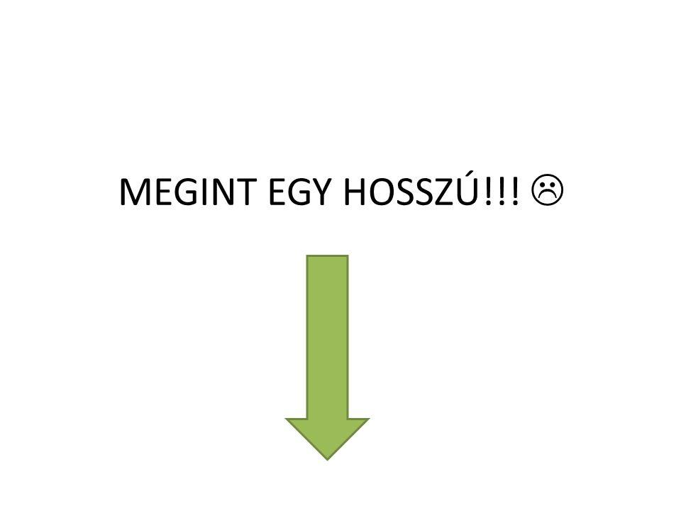 MEGINT EGY HOSSZÚ!!! 