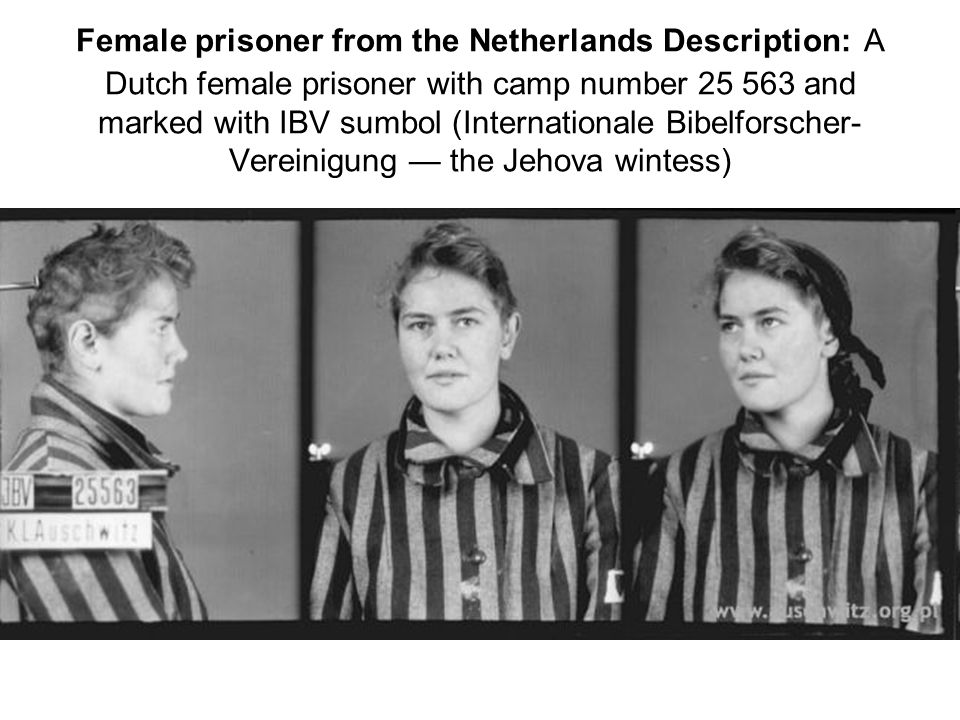 Female prisoner from the Netherlands Description: A Dutch female prisoner with camp number 25 563 and marked with IBV sumbol (Internationale Bibelforscher-Vereinigung — the Jehova wintess)