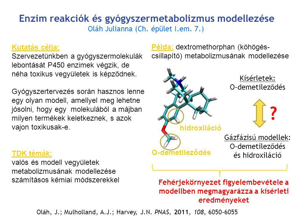 Enzim reakciók és gyógyszermetabolizmus modellezése