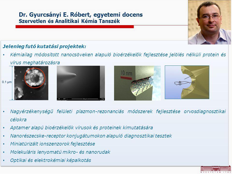 Dr. Gyurcsányi E. Róbert, egyetemi docens Szervetlen és Analitikai Kémia Tanszék