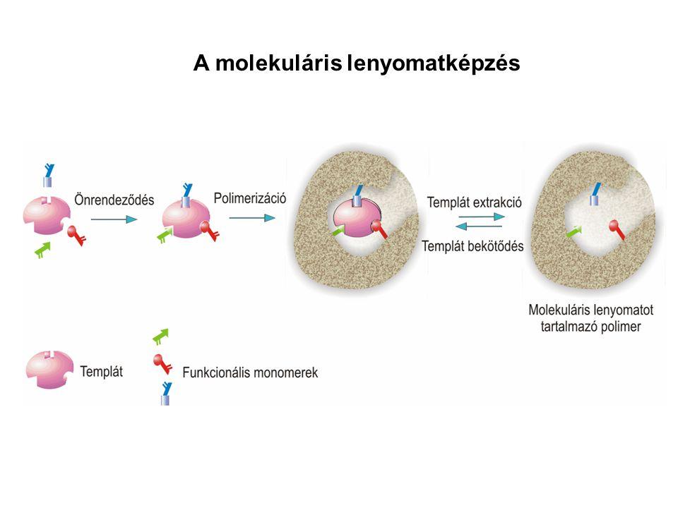 A molekuláris lenyomatképzés