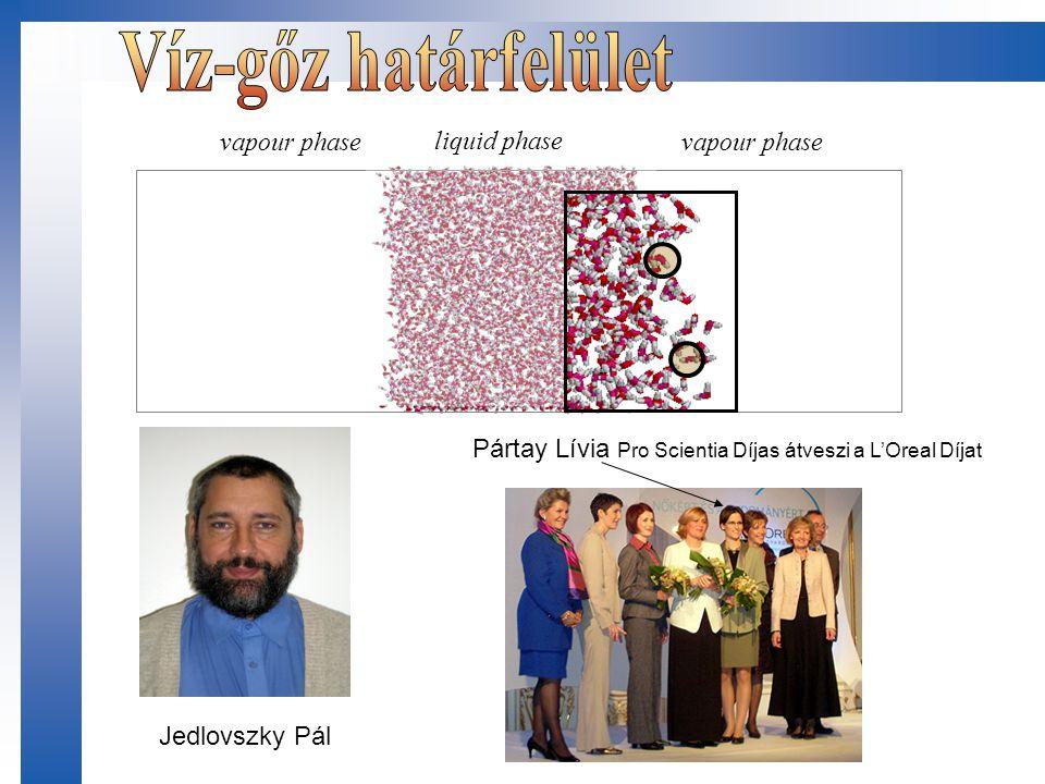 Víz-gőz határfelület vapour phase liquid phase vapour phase