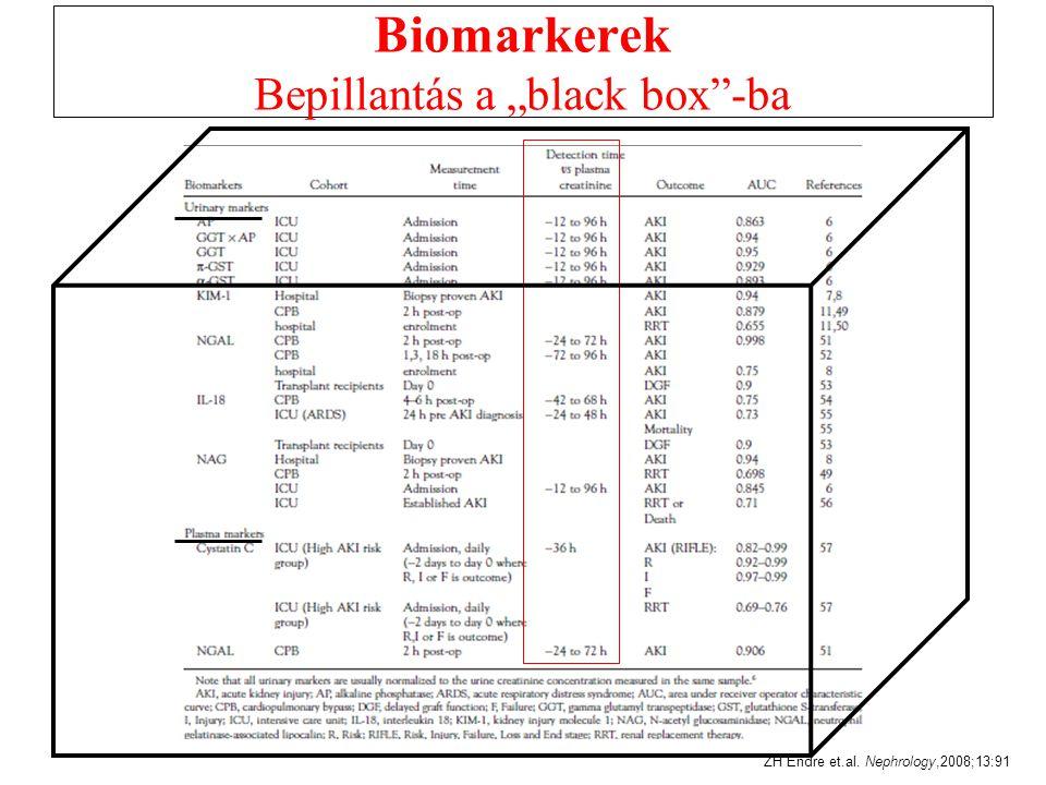 """Biomarkerek Bepillantás a """"black box -ba"""