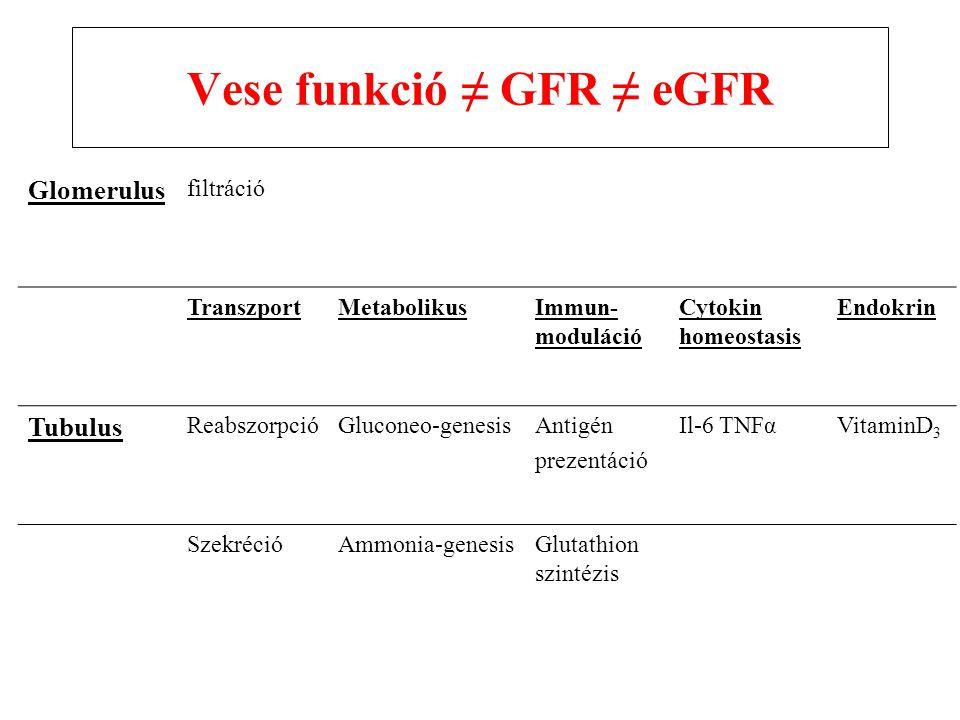 Vese funkció ≠ GFR ≠ eGFR
