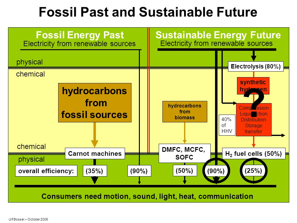 Fossil Past and Sustainable Future