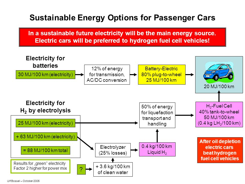 Sustainable Energy Options for Passenger Cars