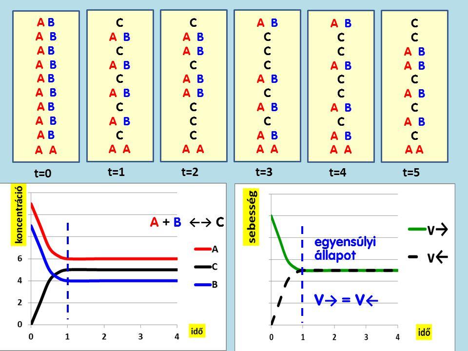 V→ = V← t=0 t=1 t=2 t=3 t=4 t=5 A + B ←→ C egyensúlyi állapot A B A B