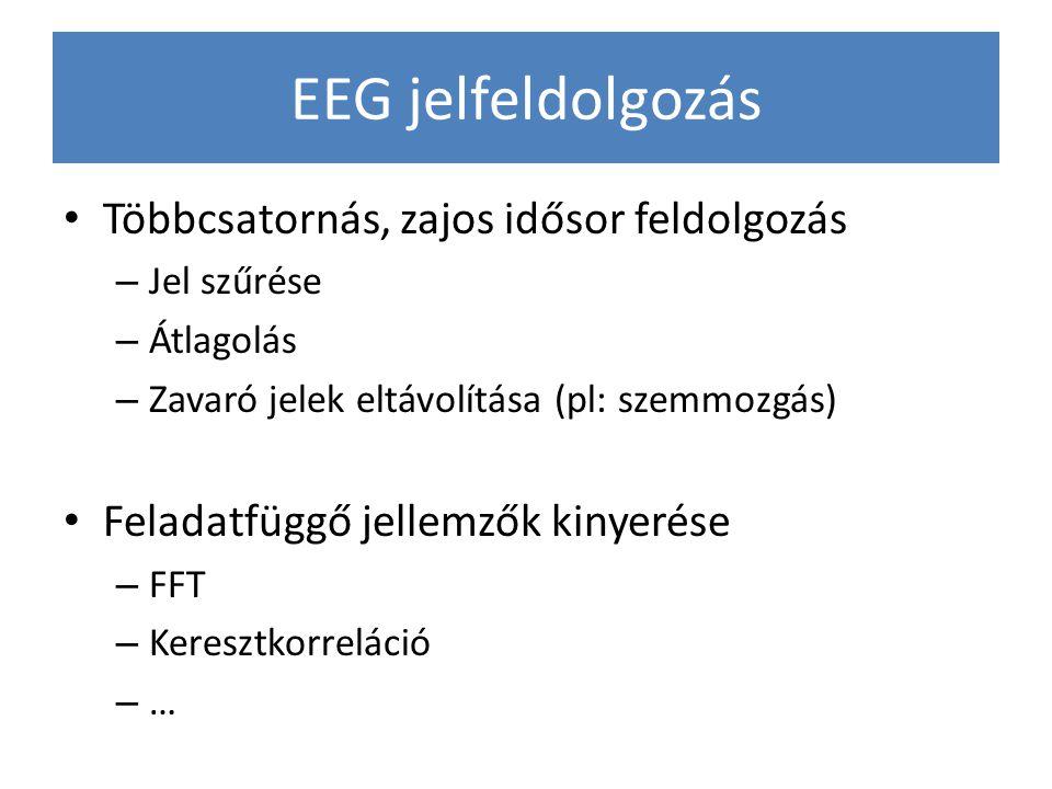 EEG jelfeldolgozás Többcsatornás, zajos idősor feldolgozás