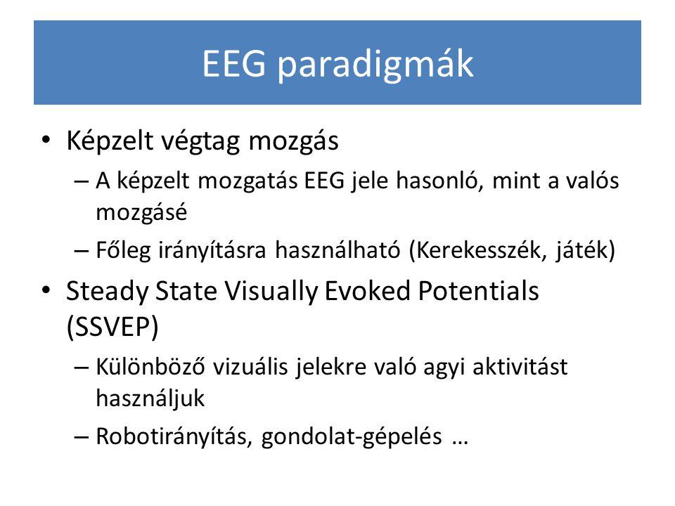 EEG paradigmák Képzelt végtag mozgás