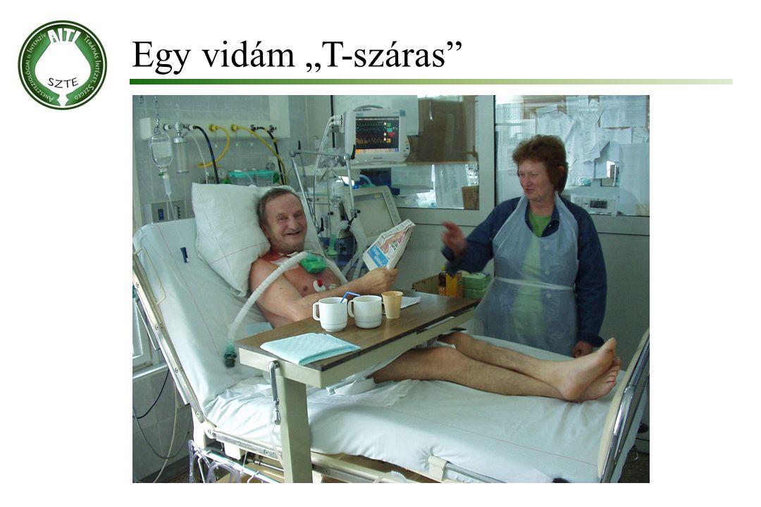 """Egy vidám """"T-száras Molnár '99"""