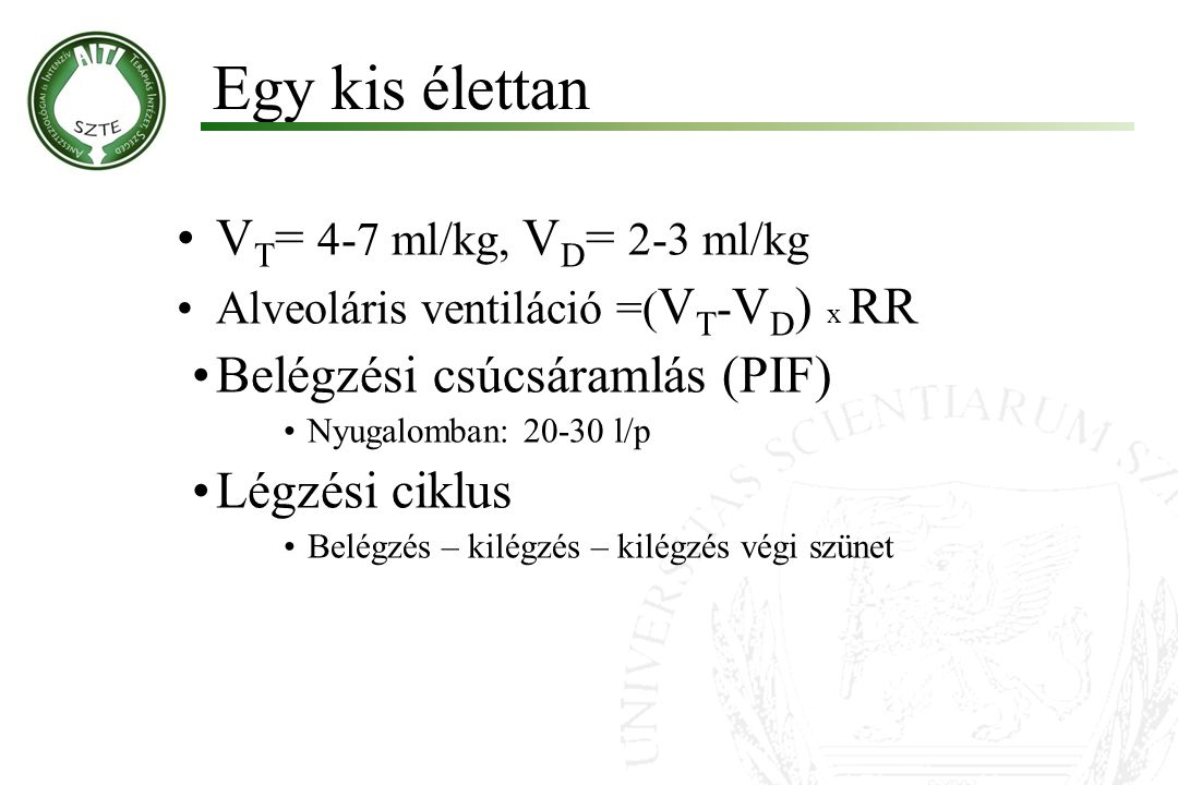 Egy kis élettan VT= 4-7 ml/kg, VD= 2-3 ml/kg