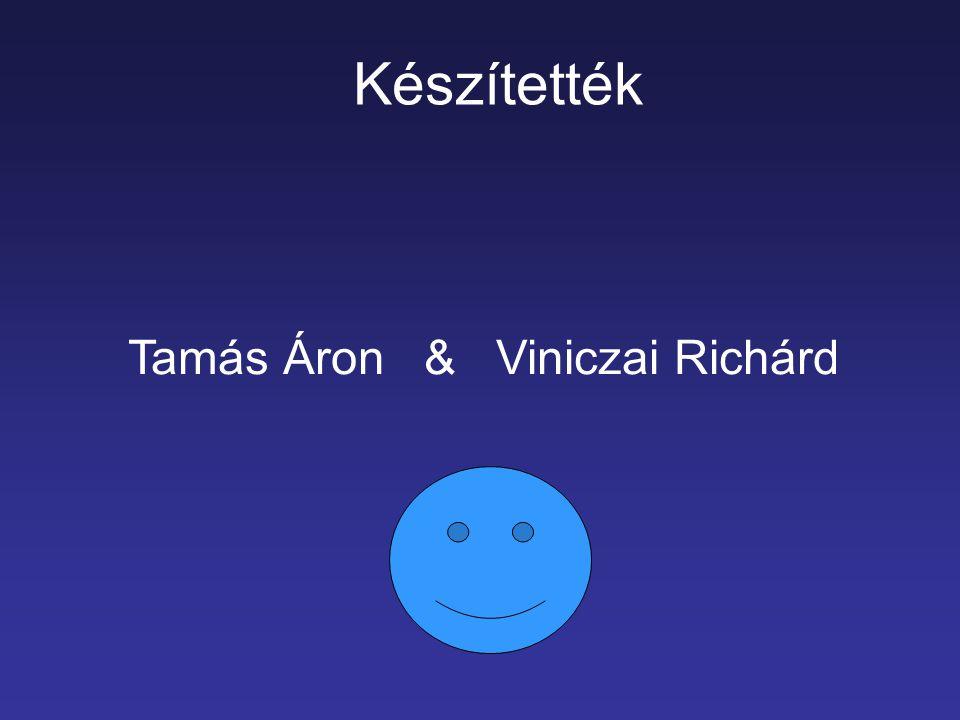 Tamás Áron & Viniczai Richárd