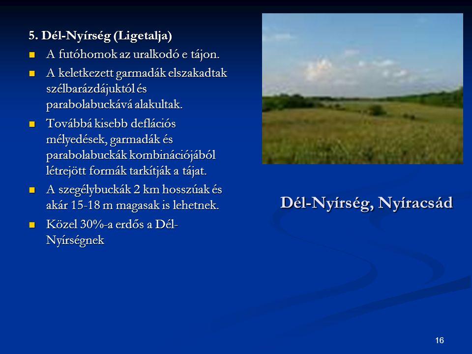 Dél-Nyírség, Nyíracsád