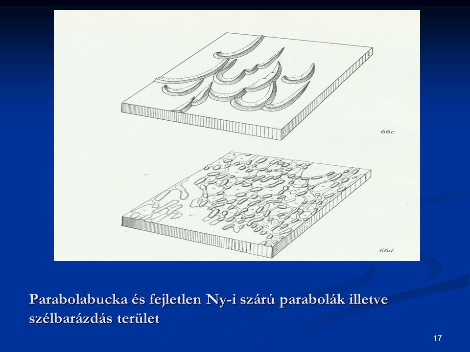 Parabolabucka és fejletlen Ny-i szárú parabolák illetve szélbarázdás terület