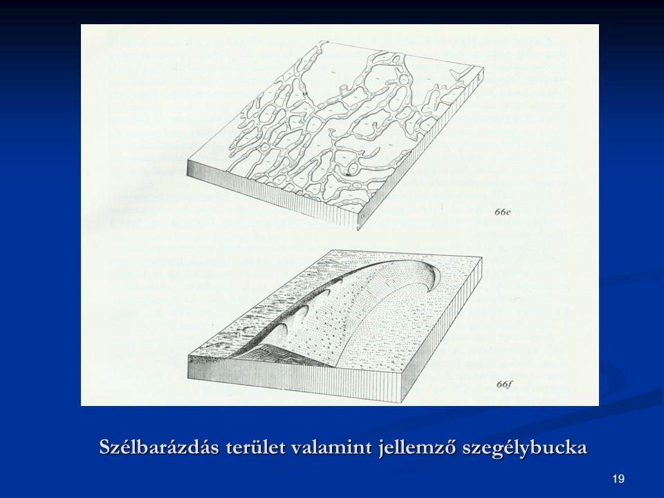 Szélbarázdás terület valamint jellemző szegélybucka