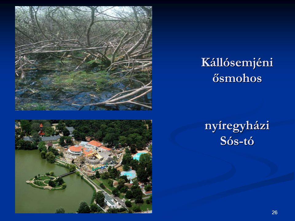 Kállósemjéni ősmohos nyíregyházi Sós-tó