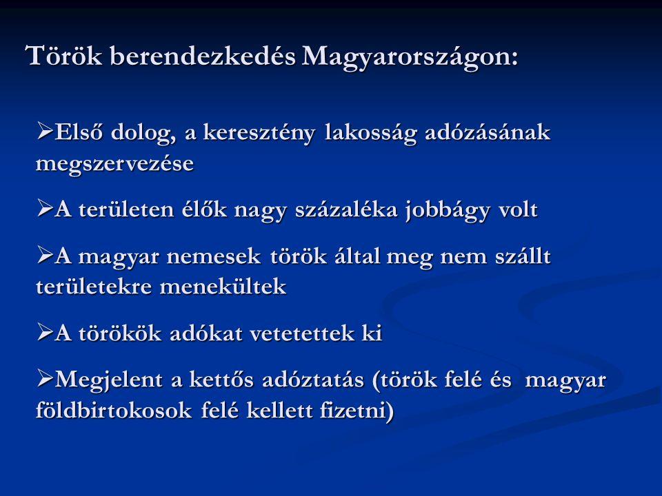 Török berendezkedés Magyarországon: