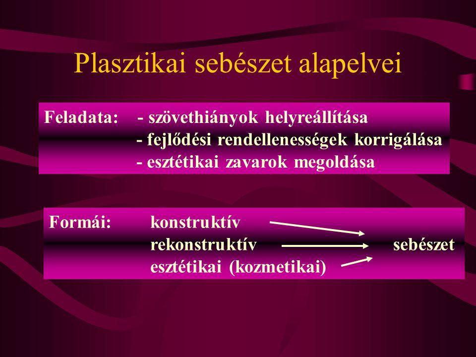 Plasztikai sebészet alapelvei