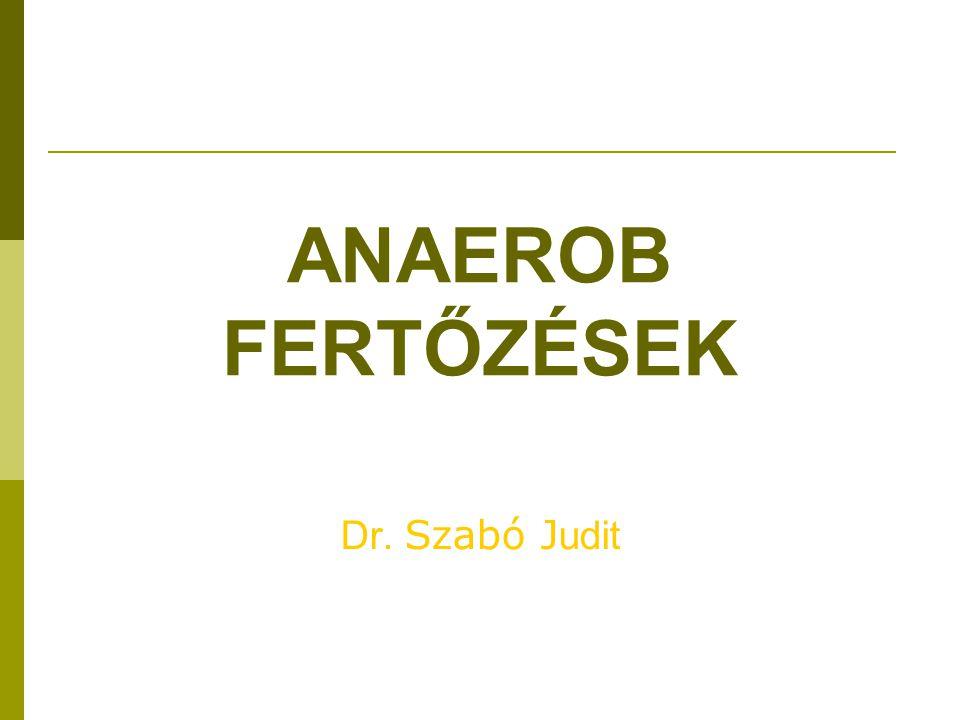 ANAEROB FERTŐZÉSEK Dr. Szabó Judit