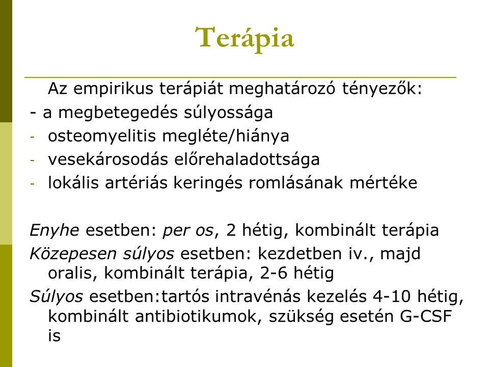 Terápia Az empirikus terápiát meghatározó tényezők: