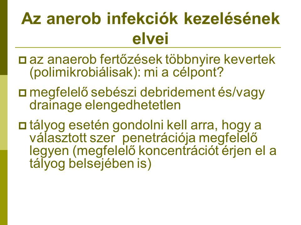 Az anerob infekciók kezelésének elvei