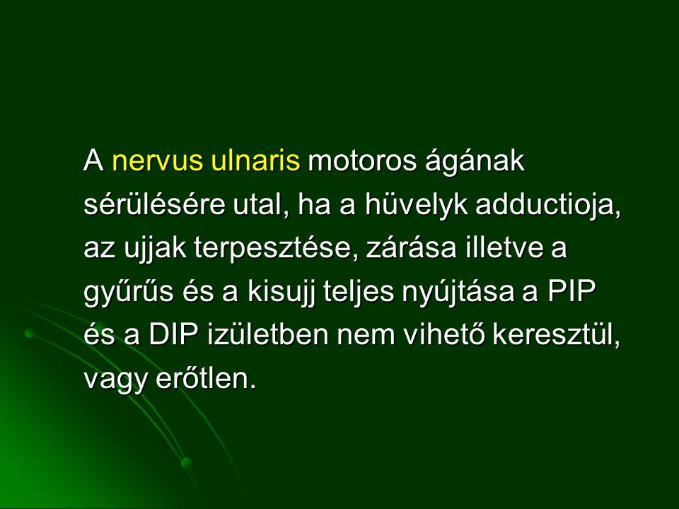 A nervus ulnaris motoros ágának