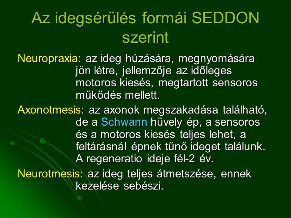 Az idegsérülés formái SEDDON szerint