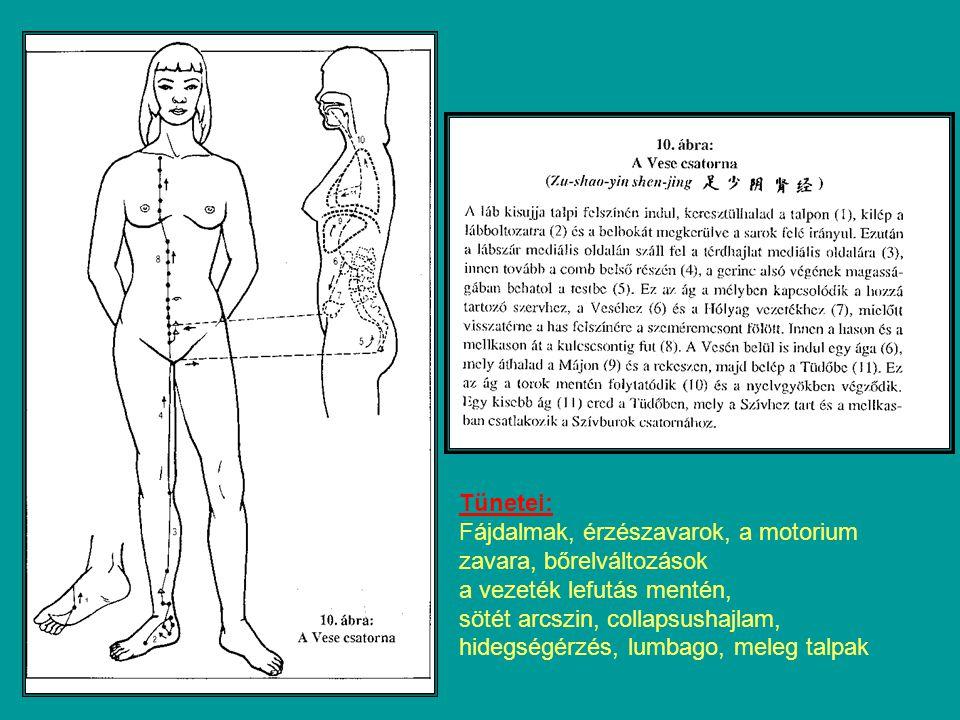 Tünetei: Fájdalmak, érzészavarok, a motorium zavara, bőrelváltozások. a vezeték lefutás mentén, sötét arcszin, collapsushajlam,