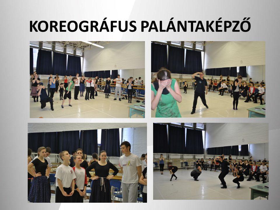 KOREOGRÁFUS PALÁNTAKÉPZŐ