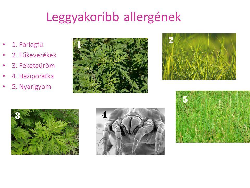 Leggyakoribb allergének