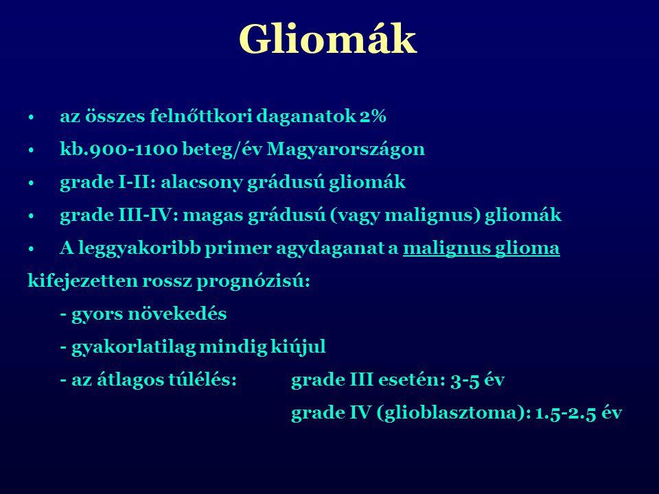 Gliomák az összes felnőttkori daganatok 2%