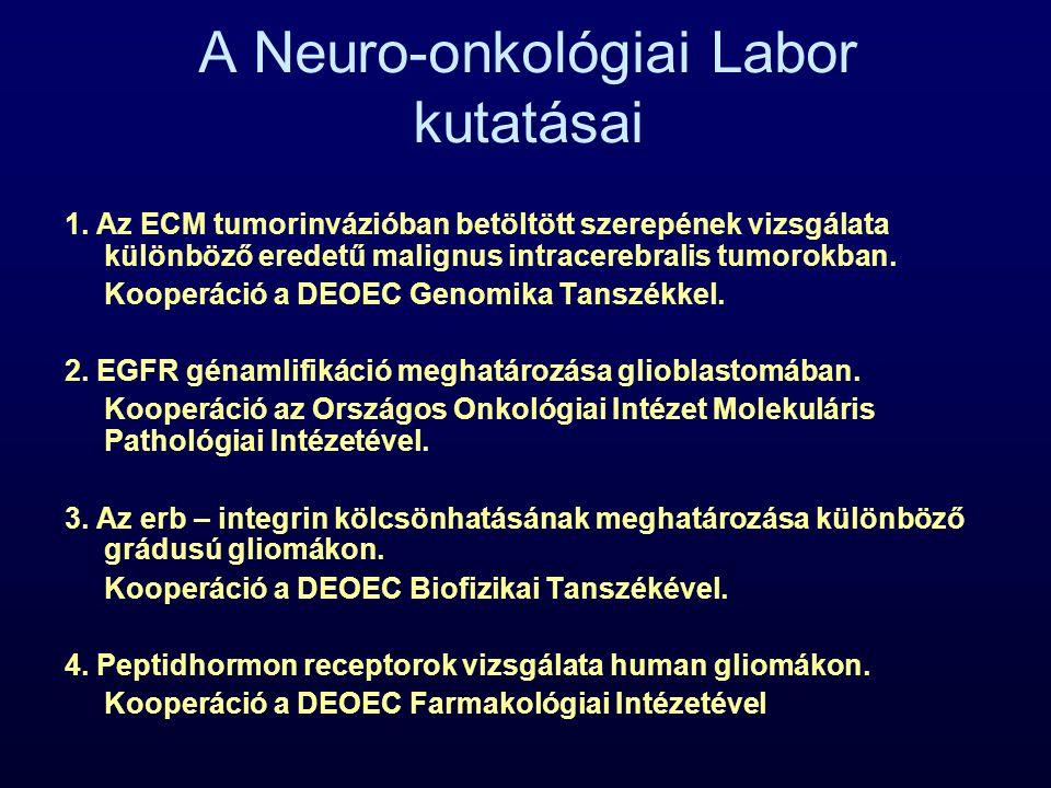 A Neuro-onkológiai Labor kutatásai