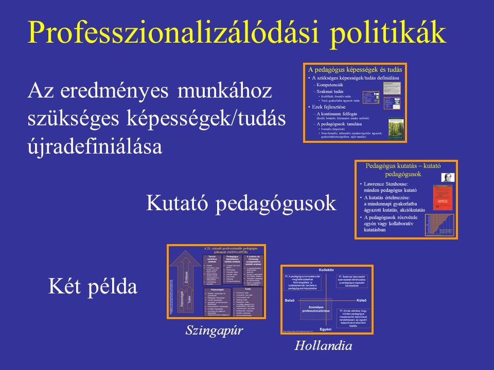 Professzionalizálódási politikák