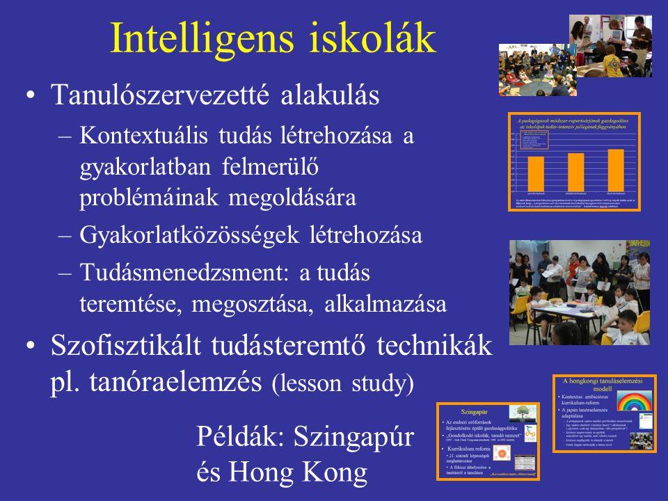 Intelligens iskolák Tanulószervezetté alakulás