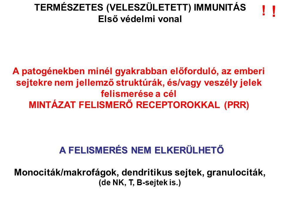 ! ! TERMÉSZETES (VELESZÜLETETT) IMMUNITÁS Első védelmi vonal