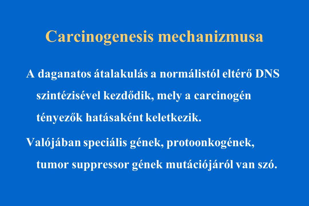 Carcinogenesis mechanizmusa