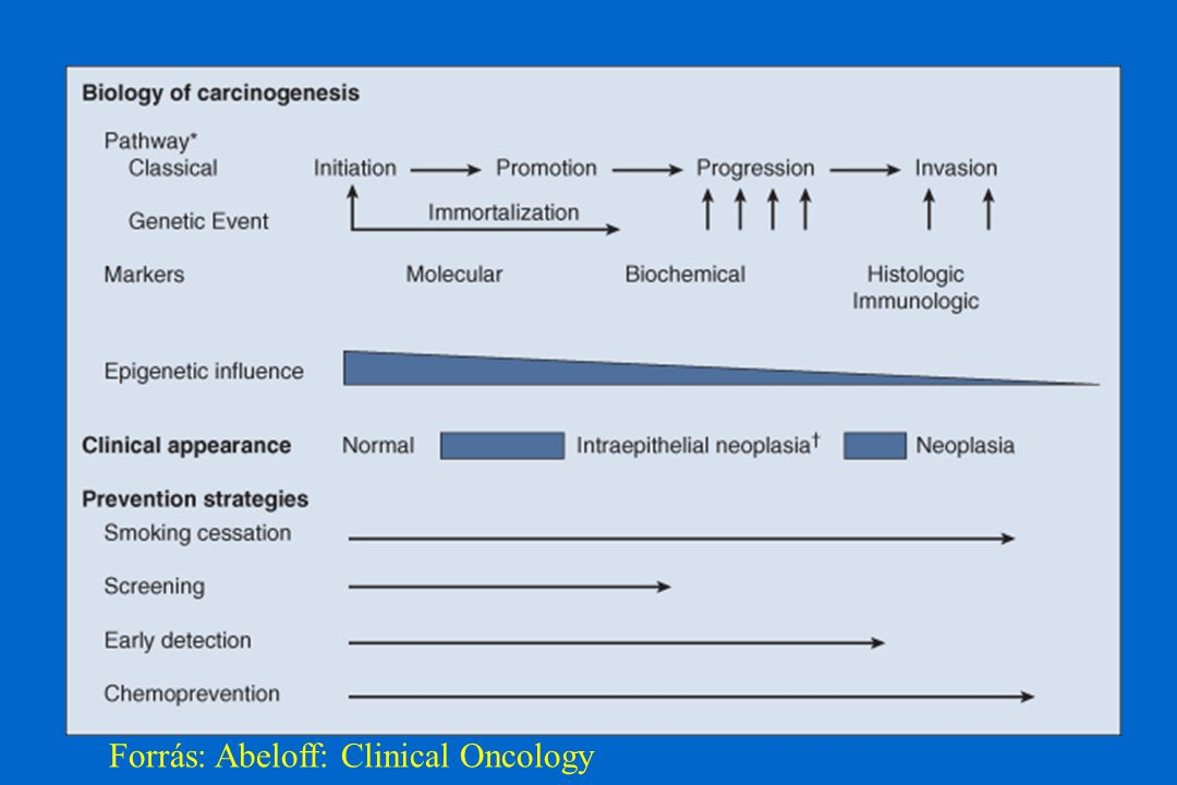 Forrás: Abeloff: Clinical Oncology
