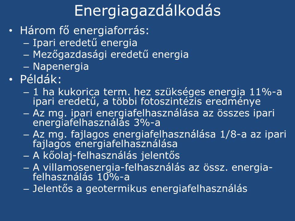 Energiagazdálkodás Példák: Három fő energiaforrás: