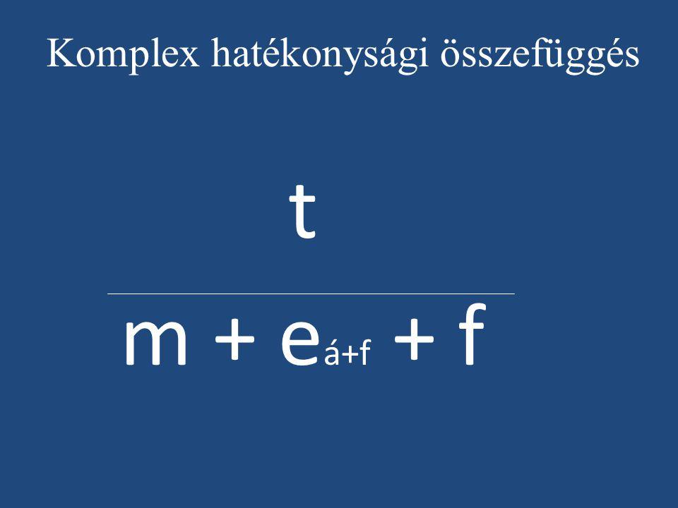 Komplex hatékonysági összefüggés