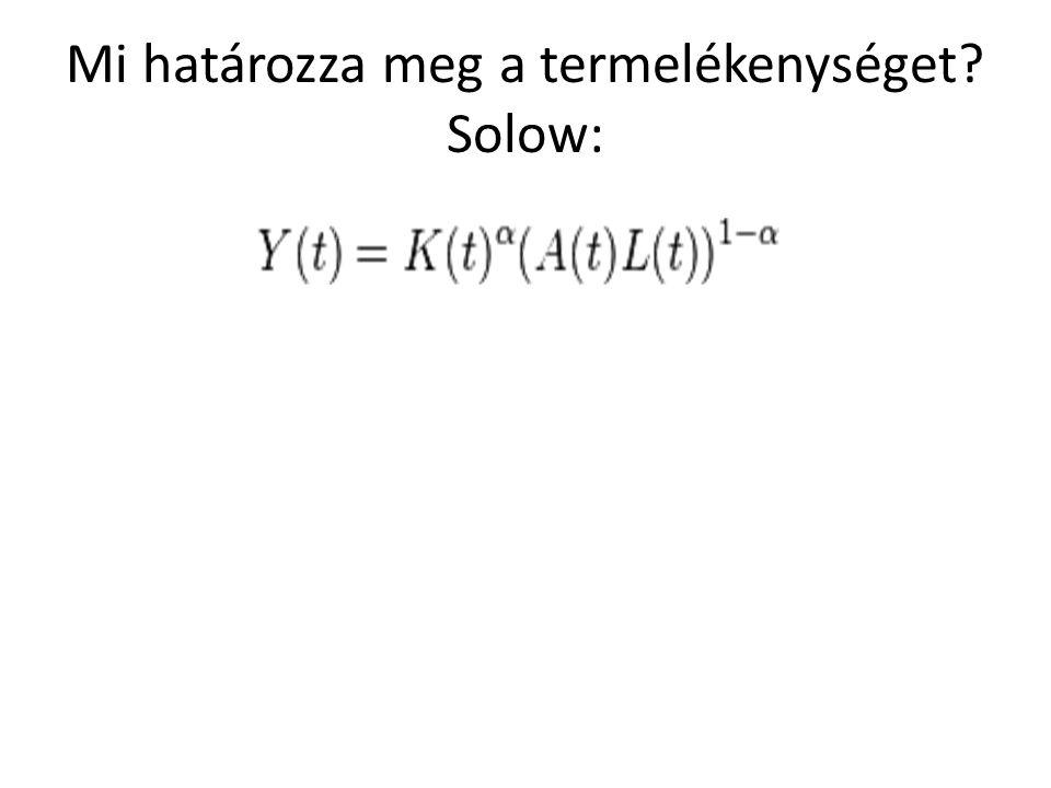 Mi határozza meg a termelékenységet Solow: