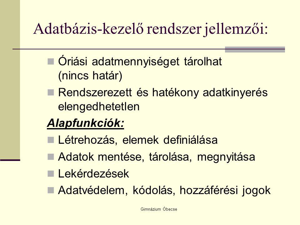 Adatbázis-kezelő rendszer jellemzői: