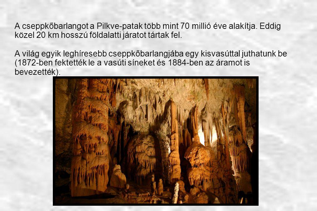 A cseppkőbarlangot a Pilkve-patak több mint 70 millió éve alakítja