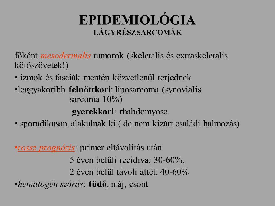 EPIDEMIOLÓGIA LÁGYRÉSZSARCOMÁK