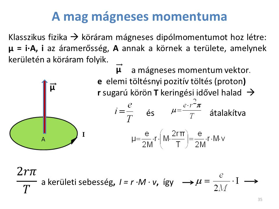 A mag mágneses momentuma