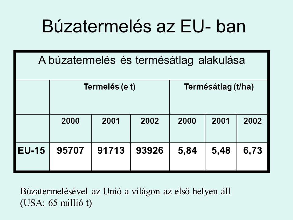 Búzatermelés az EU- ban
