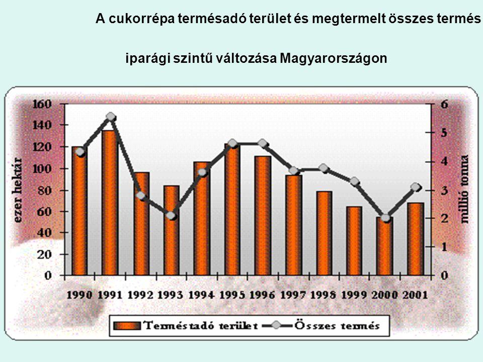 1. ábra: A cukorrépa terméstadó terület és megtermelt összes termés iparági szintű változása Magyarországon
