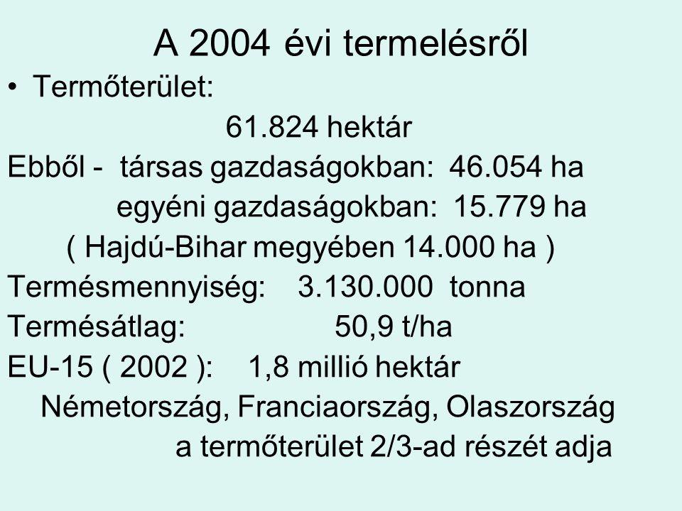 A 2004 évi termelésről Termőterület: 61.824 hektár