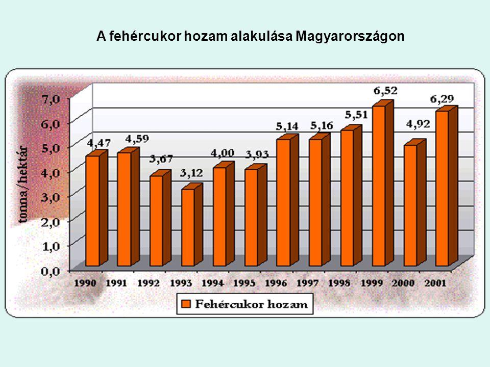 : A fehércukor hozam alakulása Magyarországon