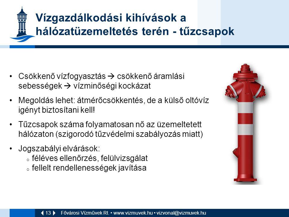 Vízgazdálkodási kihívások a hálózatüzemeltetés terén - tűzcsapok