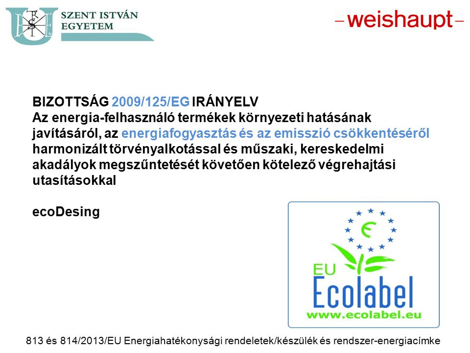 BIZOTTSÁG 2009/125/EG IRÁNYELV